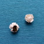 White Rose Brooch with Matching Earrings