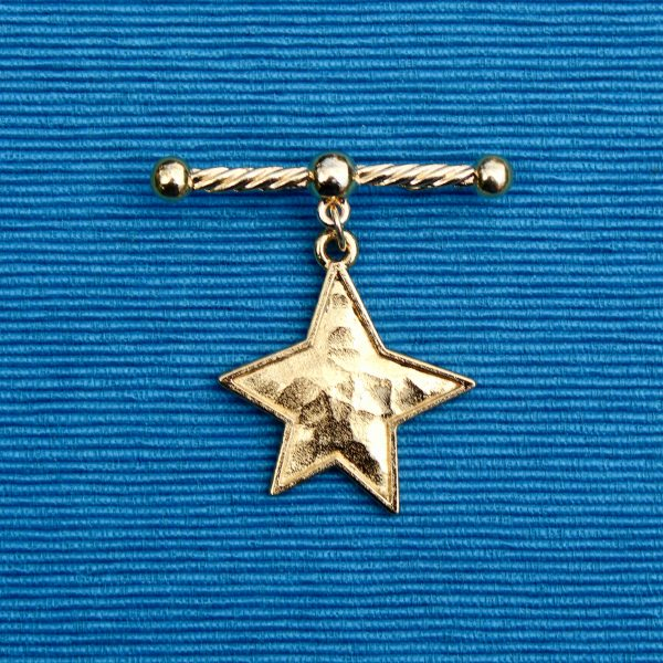 star bar brooch